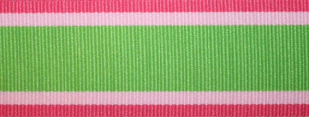 Green & Pink Stripe