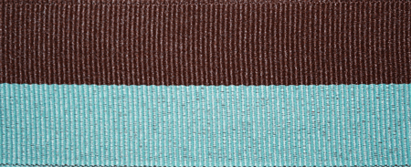 Mint & Brown Stripe