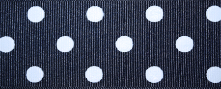 Navy & White Polka Dot